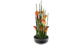 Floristik – Glasschale mit Calla orange und Schachtelhalm