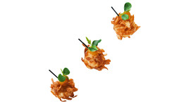 Fingerfood - Teriyaki-Huhn, Mango, Wantan