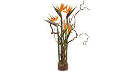 Floristik – Glasvase mit Strelitzia und Zweigen