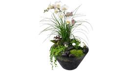 Floristik - Pflanzschale Glas mit Orchidee weiß