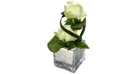 Floral arrangement – small glass cube with white roses