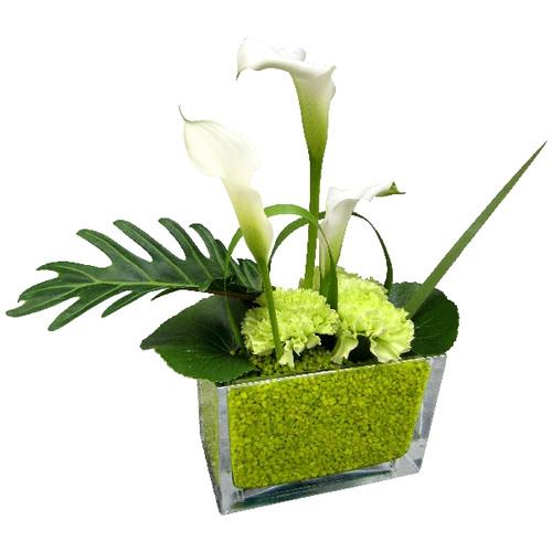 Floristik – kleiner Glasquader mit Calla weiß und grünen Nelken