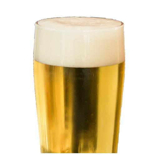 Pale ale | lager 30 l