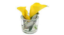 Floral arrangement – Small glass cylinder with yellow calla