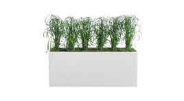 Filling of planter boxes - Cypress grass and moss covering