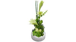 Floristik – Glasschale mit weißen Llilien und weißen Rosen