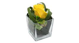Floral arrangement – small glass cube with yellow rose