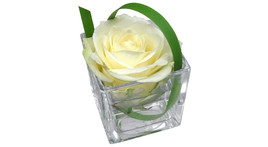 Floral arrangement – small glass cube with white rose in water
