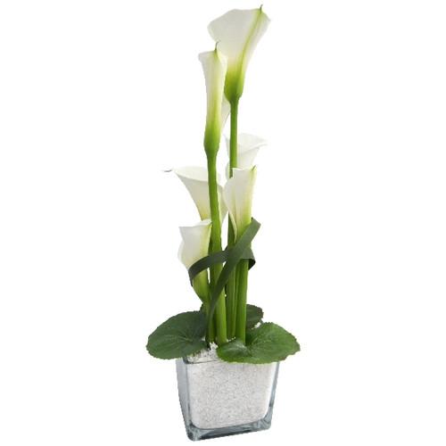 Floristik – großer Glasquader mit Calla weiß