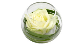 Floral arrangement – small glass globe vase with white rose